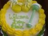 cake53