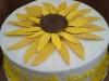 cakes77
